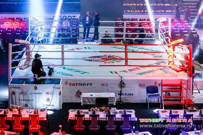 Прямая трансляция поединков Чемпионата мира «Бои по правилам TNA» на кубок TATNEFT сезона 2016-2017 гг.
